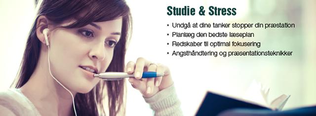 studie_stress