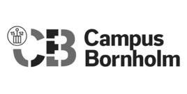 Api campus bornholm