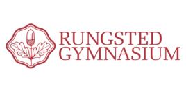 Api rungsted gymnasium logo